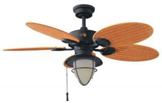 Hampton Bay Outdoor Ceiling Fan with Light Kit Bronze