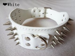3'' Wide White Leather Spiked Dog Collars Large Dog Pitbull Bully Boxer Terrier