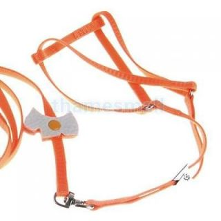 Pet Dog Orange Nylon Collar Leash Harness Chest Strap Adjustable for Outdoor