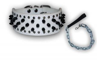 Pit Bull Black Leather Dog Collar Leash Set Studs Spikes Boxer Bully Terrier