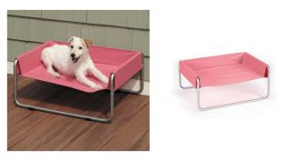 Pink Small Insect Shield Elevated Pet Cots for Dogs Bed Protects Your Dog