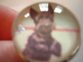 Vintage Style Scottie Scottish Terrier Dog Silver Bubble Charm Ring
