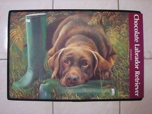 Chocolate Labrador Retriever Dog Colour Door Floormat