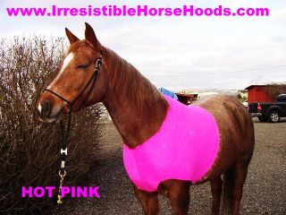 M Horse Blanket Shoulder Guard Hot Pink Matching Tail Bag Included Free SHIP