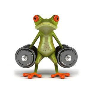 Stick 3D Frog Funny Car Stickers Truck Window Vinyl Decal Sticker