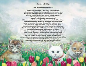 Personalized Cat Memorial Rainbow Bridge Poem Loss of Pet Animal Memorial