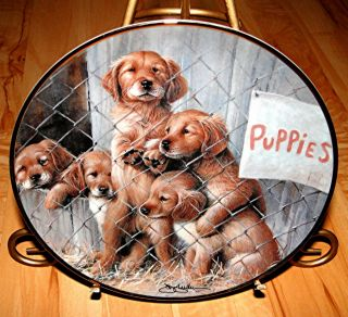 ASPCA Adopt A Puppy Dog Springer Dog Puppy Franklin Mint Plate