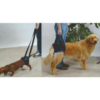 Walkabout Harness for Dogs Cats Owner to Assist The Pet with Exercising