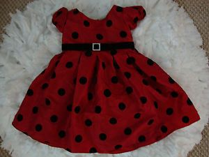 Too Cute Lady Bug Dress Baby Girls Clothes Size 2T Youngland