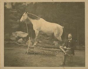 Capt Sigsbee Animal Trainer w White Horse Standing on Chair Antique Circus Photo