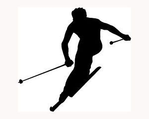 Ski Sticker Skier Silhouette Car Window Vinyl Decal Extreme Sports Snow Cool S2