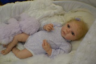 Nigel by Lilianne Breedveld Still Nigel Beautiful Reborn Baby Doll