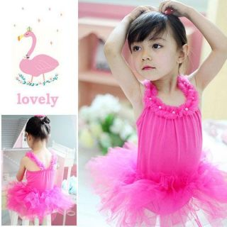 Girl New Leotard Ballet Tutu Skirt Dress Sz 2 3 4 5 6Y