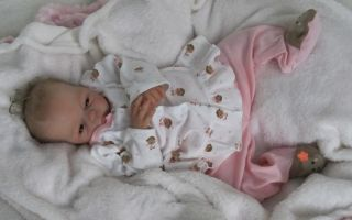 Doves Nursery Realistic Newborn Reborn Baby Girl Emmaline Donna Lee Sculpt