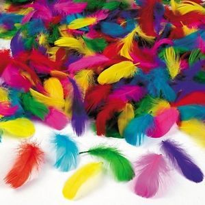 GOOSE Small Feather Assortment Mixed Color Kids Toy About 600pcs