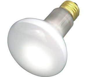 Replacement Light Bulb 100 Watt R20 Medium Base Lighting Bulbs 120 Lava Lamp