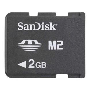 Details about Sandisk 2GB Memory Stick Pro Duo Micro M2 MS 2 G GB 2G
