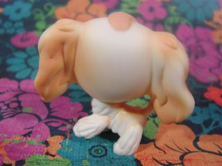 Littlest Pet Shop LPS 347 Retired Cream Tan Cocker Spaniel Puppy Dog Green Eyes