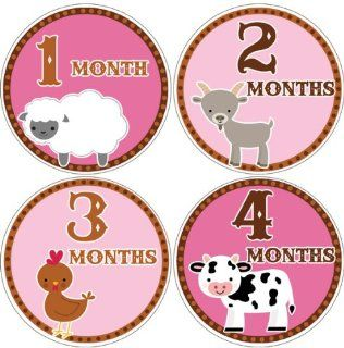 Farm Animals #145 Girl Baby Month Stickers for Bodysuit Baby