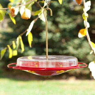 Perky Pet Hummingbird Oasis Plastic Feeder   Bird Feeders