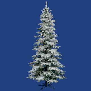 Vickerman 12 ft. Flocked Slim Utica Fir Multi LED Christmas Tree   Christmas Trees
