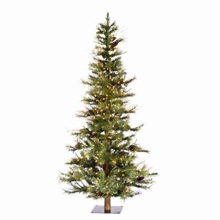 6 ft. Pre lit Clear Light Ashland Fir Christmas Tree with Wood Trunk   Christmas Trees